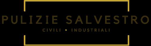 Pulizie Salvestro